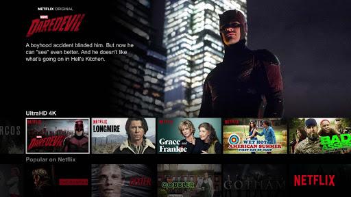 Netflix movie streaming site
