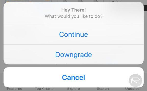 How To Downgrade iOS