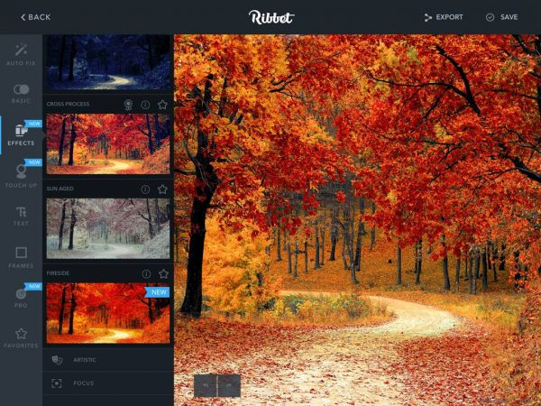 Interface of photo collage apps Ribbet on iPad featuring fall-themed photo being edited