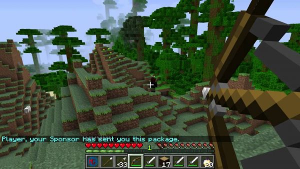Minecraft: the Hunger Games