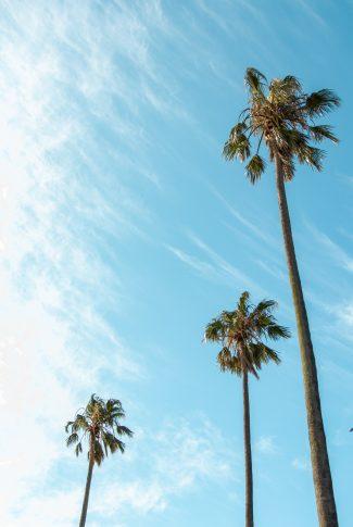 Download Aesthetic Summer Sky Wallpaper Cellularnews