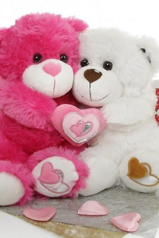 Download Couple Teddy Bear Wallpaper Cellularnews