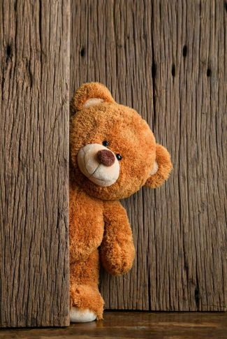 A cute little brown teddy bear want to play hide and seek with you.