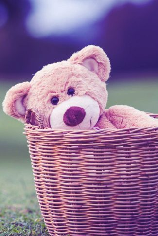 Download Purple Teddy In A Basket Wallpaper Cellularnews