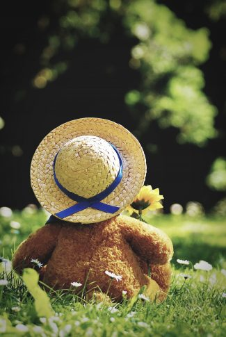 A teddy bear sitting in grass. And a yellow flower.