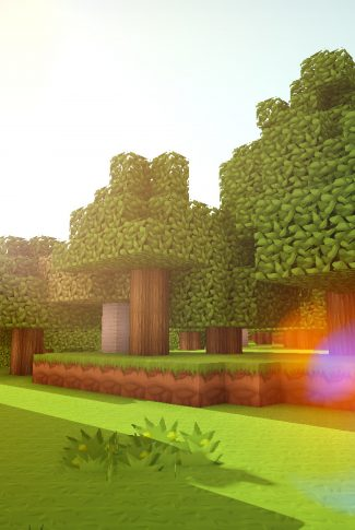 Download Minecraft: Forest Scenery