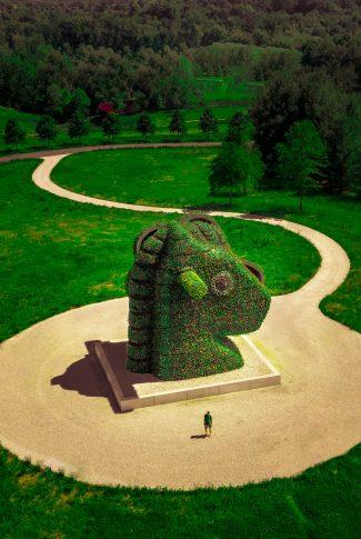 Download Grass Wallpaper Unicorn Park Cellularnews