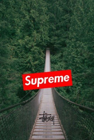 Nice and simple, classic red Supreme logo in a relaxing forest footbridge background.