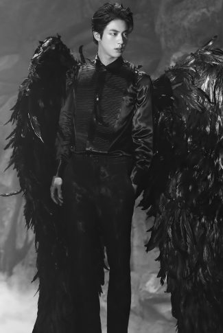 25 bts jin with wings