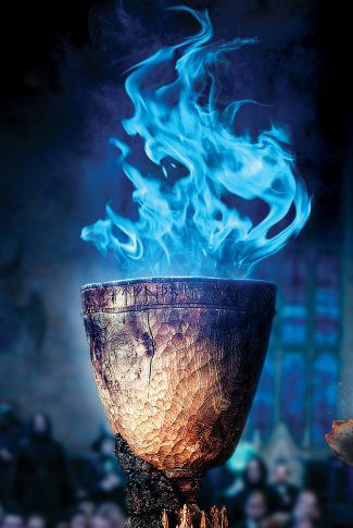 Download Harry Potter And The Goblet Of Fire The Goblet Wallpaper Cellularnews