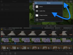 LumaFusion App Review: Edit Videos Like a Professional